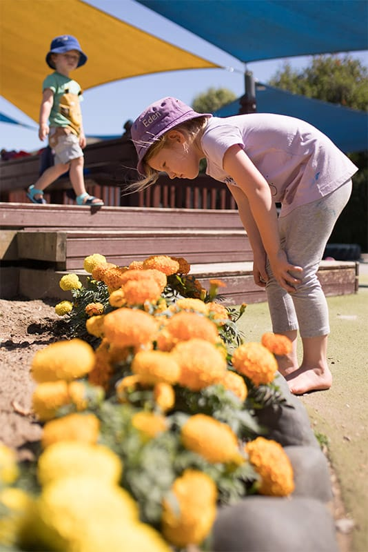 girl bending over looking at flowers at the childcare center in tauranga